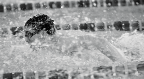 Men's and women's swimming take a hit against Albright